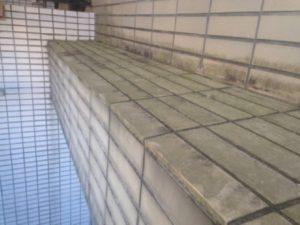 練馬区 一戸建て住宅 タイル洗浄